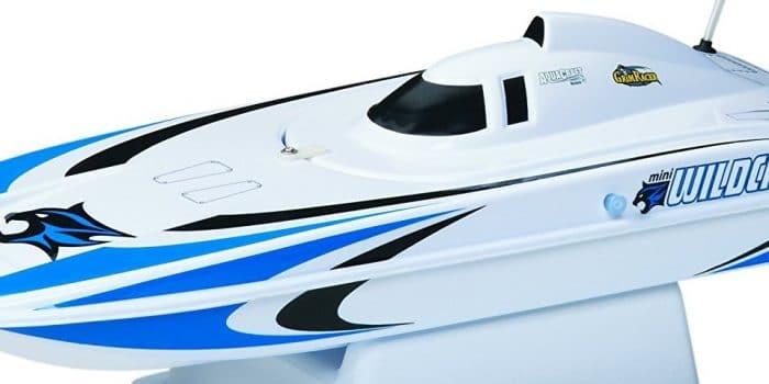 catamaran wildcat